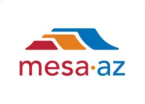 City of Mesa Case Study